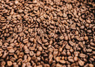 Kaffee Roesterei Impressionen 07 19 13